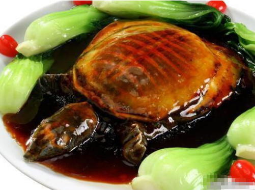 甲鱼怎么做最好吃又有营养