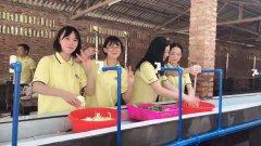 广州黄埔公司活动部门团建休闲聚会团建拓展的生态园